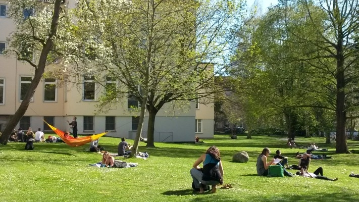 Campus Wiese Sommer 400px